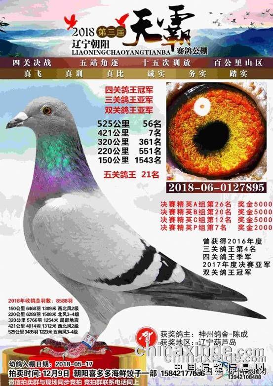 http://gdgp6.chinaxinge.com/pic4/201812/20181204100608826_s.jpg