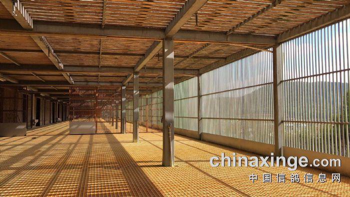 园区内建有全钢架钢木结构赛鸽公棚一幢,建筑面积3000㎡,全长100米一